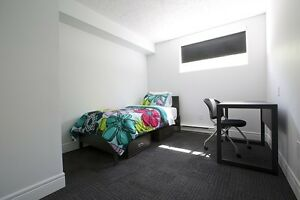 Student Apartments for Rent! Great for Sharing! WIFI Included! Kitchener / Waterloo Kitchener Area image 11