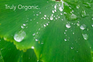 Help Our Organics Brand Become Famous in Cape Breton