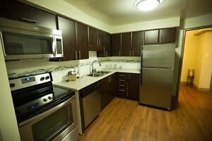 Newly Renovated 2 & 3 Bedroom Student Apartments at 675 Richmond