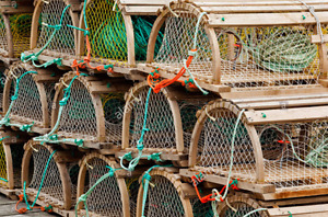 Looking to Buy or Lease Fall Lobster Licence on PEI(LFA 25)
