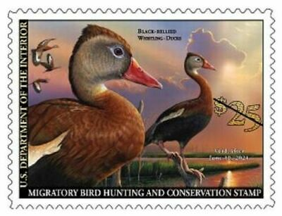 #RW87  2020 Federal Duck Stamp  - MNH