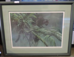 Robert Bateman - Shadow of the rainforest