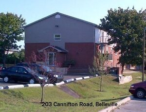 ****Inclusive 203 Cannifton Road in Belleville****