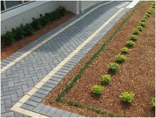 Havenbrick Charcoal – 200 x 100 x 50 NEW Forster Great Lakes Area Preview
