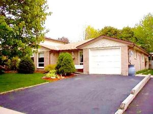 Beauty Bungalow in Guelph's Quiet South End! 3 Bed, Fenced Yard!