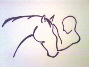 equine Massage Therapy, Chiropractor, Reiki and Cranial Sacral