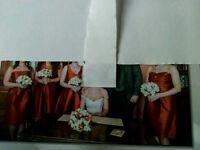 4 Alfred Sung bridesmaid dresses in burnt orange dupioni fabric