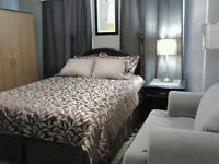 Quiet, Clean, Central, Furnished 2 Bedroom - Avail Sept 1
