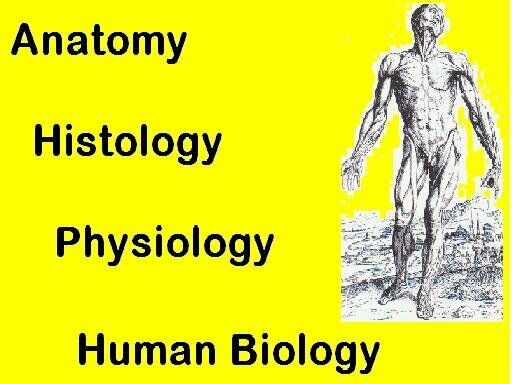 Private Tutor for Medical Students: Anatomy, Physiology, Human ...