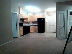 Spruce Grove brand new 2 bedroom available immediately