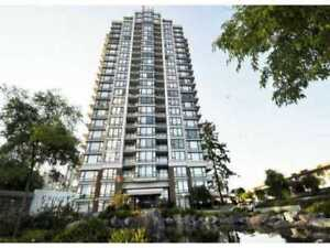 Modern, Bright and Spacious fully furnished 1-bedroom Unit for R