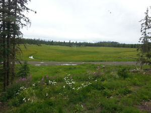 Live off the grid, be self sufficient with this remote homestead Williams Lake Cariboo Area image 3
