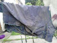 Weatherbeeta Landa Original Standard Meduim Turn Out Rug.