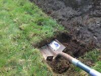 Garden grass + topsoil