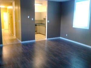 Newly Renovated 1 bedroom apt in quiet and secure building