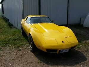 1975 Chevrolet Corvette L48 Coupe (2 door)