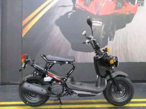 2008 Honda ruckus