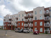 FURNISHED 2 BEDROOM CONDO AB SIDE