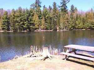 Waterfront Building lot on Calabogie Rd