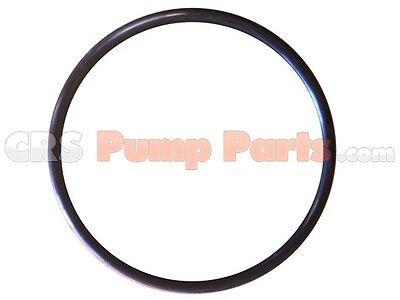 Concrete Trailer Pump Parts Putzmeister O-ring 165 X 8 U041463004