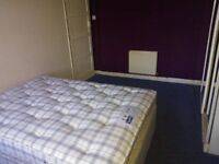 Large Single room to let with double bed Devonshire road area Proffessional worker please