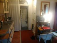 SINGLE STUDIO-BEDSIT (for MATURE NON-SMOKER PROF/ ACADEMIC / TEACHER / MEDIC / MUSICIAN) in village