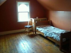 Rooms in downtown, INCLUSIVE apartment! available May 1