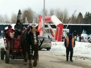Pour une activité qui sort de l'ordinaire Saguenay Saguenay-Lac-Saint-Jean image 4