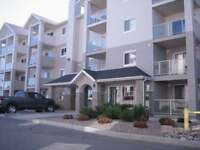fully furnished 2-bedroom condo Axxess Developments