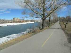 Downtown 2 Bedroom condo with panorama river view