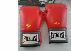 Everlast Pro Style Training Gloves Red 14 oz