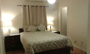 beautiful, large and bright room available: females