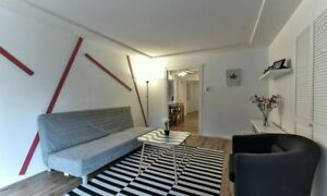 Cozy-Modern Furnished Entire house