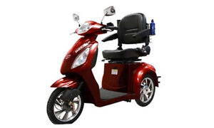 3 wheel ebike