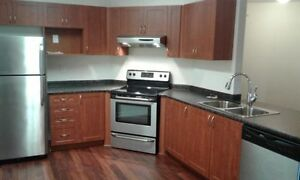 Luxury 1 bedroom Apartment, April 1st or earlier, Parking incl