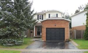 BRAND NEW Beautiful&Bright 1 bedroom Courtice Basement apartment