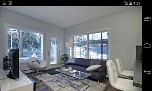 Bedroom for Rent in New Downtown Oliver Condo