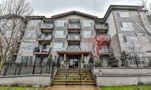 Beautiful 2 Bedroom 2 Bathroom Unit w/Modern Finishes
