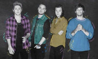 TROIS (3) BILLETS SPECTACLE ONE DIRECTION