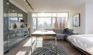 Stylish fully-furnished apartment in prime downtown location