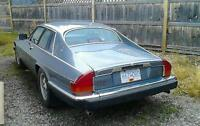 Jag xjs for sale