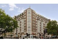 MUST SEE! Spacious, furnished 1 br in Ivor Court, great location, great flat! No agent fees.