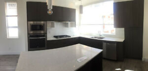 "Brand New Townhome ""Boulevard"" at Langley"