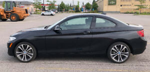 2015 BMW 2-Series 228i xDrive Coupe (2 door)