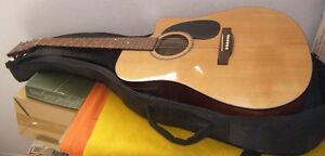 Beaver Creek Large Acoustic Guitar Steel Strings With Case