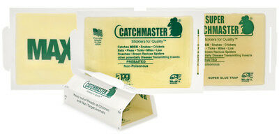 Catchmaster 72MB Peanut Butter Scent Glue Board-Mice Spider Snake Trap (10 Pack)