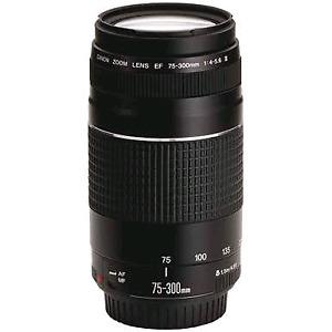 Canon 75 300 mm version ii