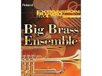 Roland SRX10 Big Brass XV series Ensemble Expansion Board (Rare)