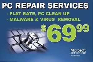 TechWreckers offers professional computer clean up services!