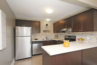 Ensuite laundry! 3 BDRM townhome for rent in Gloucester!